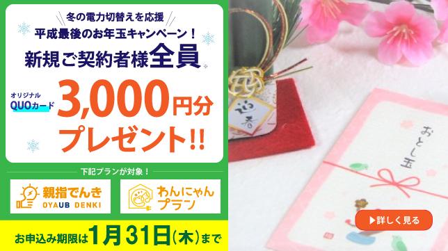 お年玉キャンペーン20190108